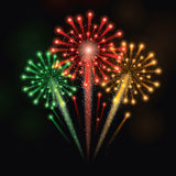 Colorful Fireworks. Vector illustration of fireworks Royalty Free Stock Photo