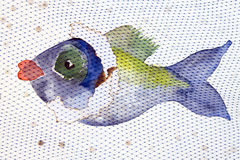 Colorful fish behind network Stock Image