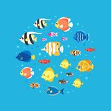 Colorful fish flat style circle vector illustration. Colorful fish and bubbles flat style circle vector illustration Royalty Free Stock Images