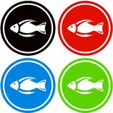 Colorful fish icon. Set colorful fish icon for aquarium industry Royalty Free Stock Photos