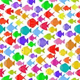Colorful fish seamless pattern. Underwater diving animal - tropical fish. Aquarium fishes. Vector illustration Stock Images