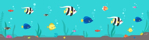 Colorful fish & seaweed flat horizontal illustration. Part one. Colorful fish and seaweed flat style horizontal illustration. Part one Stock Images