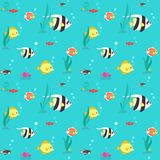 Colorful fish & seaweed flat seamless pattern. Part one. Colorful fish and seaweed flat style seamless pattern. Part one Royalty Free Stock Photography