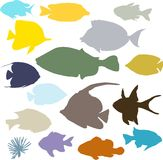 Colorful fish silhouettes set. On white background Royalty Free Stock Photography