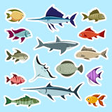 Colorful fish stickers set. Vector  on blue Royalty Free Stock Photos
