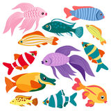 Colorful fish. Twelve colorful fish. Isolated icons Stock Photography