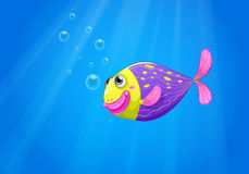 A colorful fish under the sea Royalty Free Stock Images