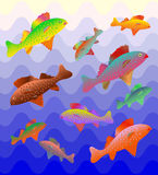 Colorful Fishes on Blue Waves Gently Shimmering from dark to light. Vector Illustration. Colorful Fishes on Blue Waves Gently Shimmering from dark to light Stock Photography