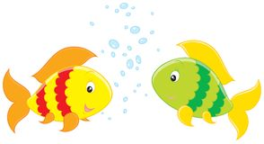 Colorful Fishes small-talk Royalty Free Stock Photo