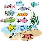 Colorful fishes underwater Royalty Free Stock Photo