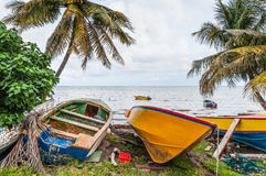 Colorful fishing boats in Grenada, Caribbean Royalty Free Stock Images