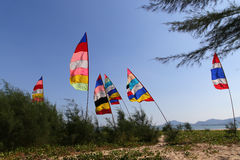 Colorful Flag on wind at the beach Stock Images