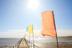 Colorful flags Stock Photos