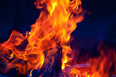Colorful Flames Royalty Free Stock Photography