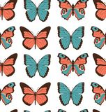 Colorful flat cartoon vector seamless pattern with different butterflies on white background.  royalty free illustration