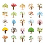Four Season Tree Flat Vector Icons Set royalty free illustration