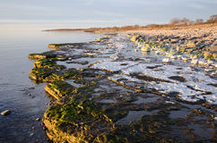 Colorful flat rock coast Royalty Free Stock Images