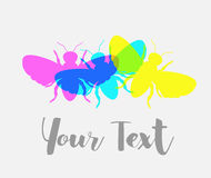 Colorful Flies Vector Background Stock Photos