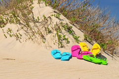 Colorful Flip Flop sandals on a beach. Colorful set of various colored flip flop sandals on a beach up against a sand dune Stock Photo