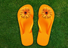 Colorful Flip Flops Royalty Free Stock Photo