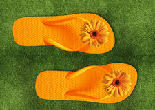 Colorful Flip Flops on green grass. Summer back Royalty Free Stock Photos