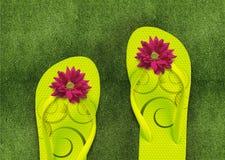 Colorful Flip Flops on green grass. Summertime Stock Photos
