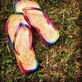 Colorful flip flops are left behind in the grass royalty free stock photo
