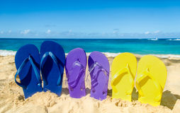 Colorful flip flops on the sandy beach Stock Image
