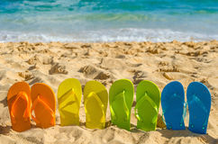 Colorful flip flops on the sandy beach Stock Photos