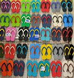 Colorful flip flops. In a shelf Royalty Free Stock Image