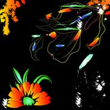 Colorful floral background Royalty Free Stock Photo