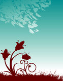 Colorful floral background Stock Photo