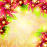 Colorful Floral Background. Vector illustration of colorful floral background Royalty Free Stock Photography