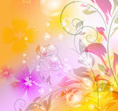 Colorful floral background Stock Photography