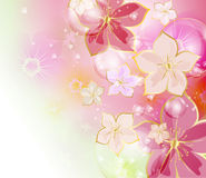 Colorful floral background Royalty Free Stock Image