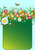 Colorful floral banner Royalty Free Stock Image