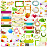 Colorful floral banner jumbo collection Stock Image