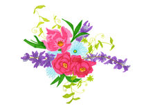 Colorful  floral bouquet  illustration Stock Photography