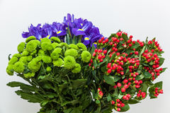 Colorful floral bouquet on a white Royalty Free Stock Photos