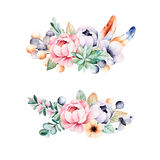 Colorful floral collection with flower,roses,leaves,succulent plant Stock Photos