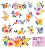 Colorful floral collection with flowers, leaves and berries. For beautiful design Royalty Free Stock Photography