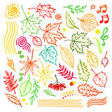 Colorful floral collection with leaves and decorative elements, autumn leaf hand drawn vector illustration Stock Photo