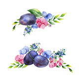 Colorful floral collection with multicolored flowers,leaves,branches,berries Royalty Free Stock Photo