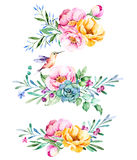 Colorful floral collection with roses,flowers,leaves,succulent plant,branches,hummingbird and more Stock Photography