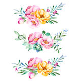 Colorful floral collection with roses,flowers,leaves,succulent plant,branches and more. vector illustration