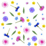 Colorful floral composition on a white background Stock Photos