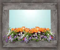 Colorful Floral Composition Stock Images