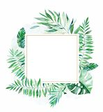 Colorful floral frame with colorful tropical leaves royalty free illustration
