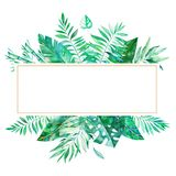 Colorful floral frame with green tropical leaves. royalty free illustration
