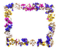 Colorful floral frame with space Royalty Free Stock Photography